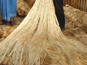 raw-jute-fiber-manufacturer-supplier-and-exporter1
